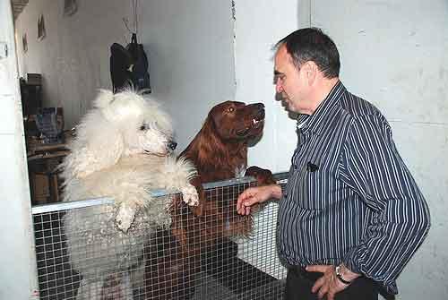 Дрессировщик собак Николай Ермаков