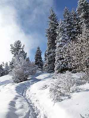 Зимняя тропа в горах Заилийского Алатау